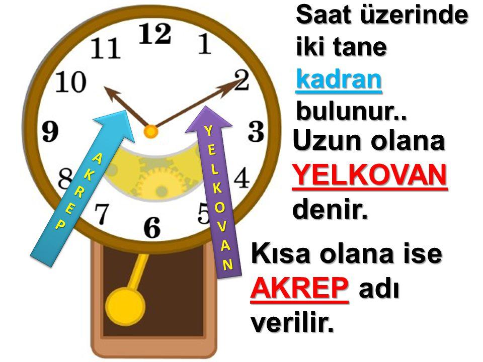 Saat üzerinde iki tane kadran bulunur.. Uzun olana YELKOVAN denir. Kısa olana ise AKREP adı verilir. YELKOV YYEELLKKOOVVANANYYEELLKKOOVVANANYELKOV YYE