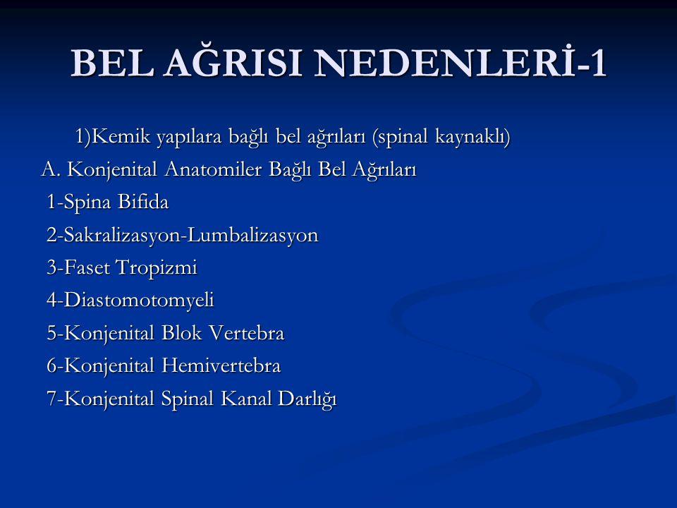 BEL AĞRISI NEDENLERİ-2 B.