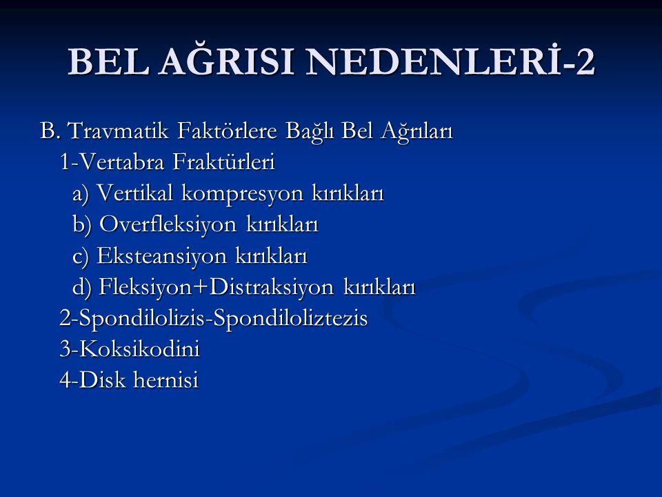 BEL AĞRISI NEDENLERİ-3 C.