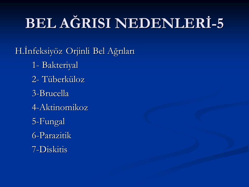 BEL AĞRISI NEDENLERİ-5 H.İnfeksiyöz Orjinli Bel Ağrıları 1- Bakteriyal 1- Bakteriyal 2- Tüberküloz 2- Tüberküloz 3-Brucella 3-Brucella 4-Aktinomikoz 4-Aktinomikoz 5-Fungal 5-Fungal 6-Parazitik 6-Parazitik 7-Diskitis 7-Diskitis
