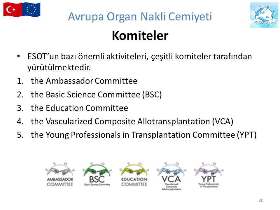 ESOT'un bazı önemli aktiviteleri, çeşitli komiteler tarafından yürütülmektedir. 1.the Ambassador Committee 2.the Basic Science Committee (BSC) 3.the E