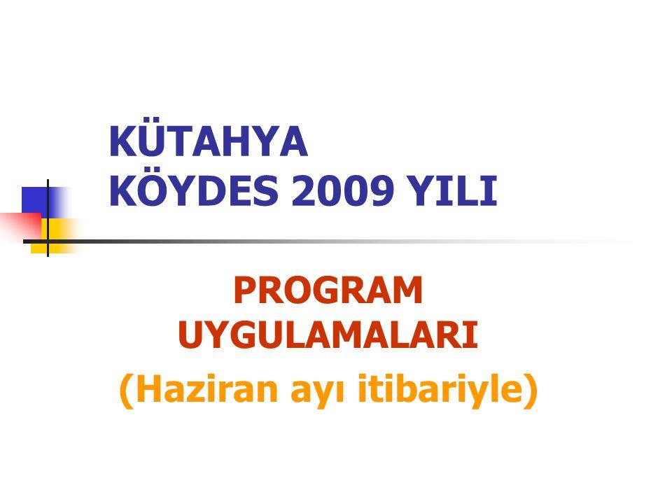 KÜTAHYA KÖYDES 2009 YILI PROGRAM UYGULAMALARI (Haziran ayı itibariyle)