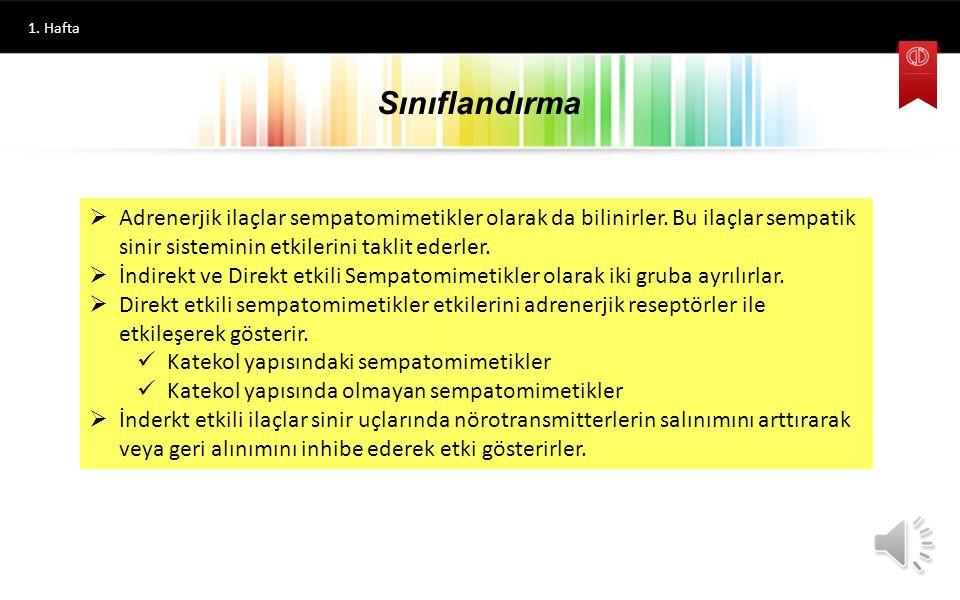 Hazırlayan FARMASÖTİK KİMYA II Adrenerjik İlaçlar Prof. Dr. İlhan IŞIKDAĞ