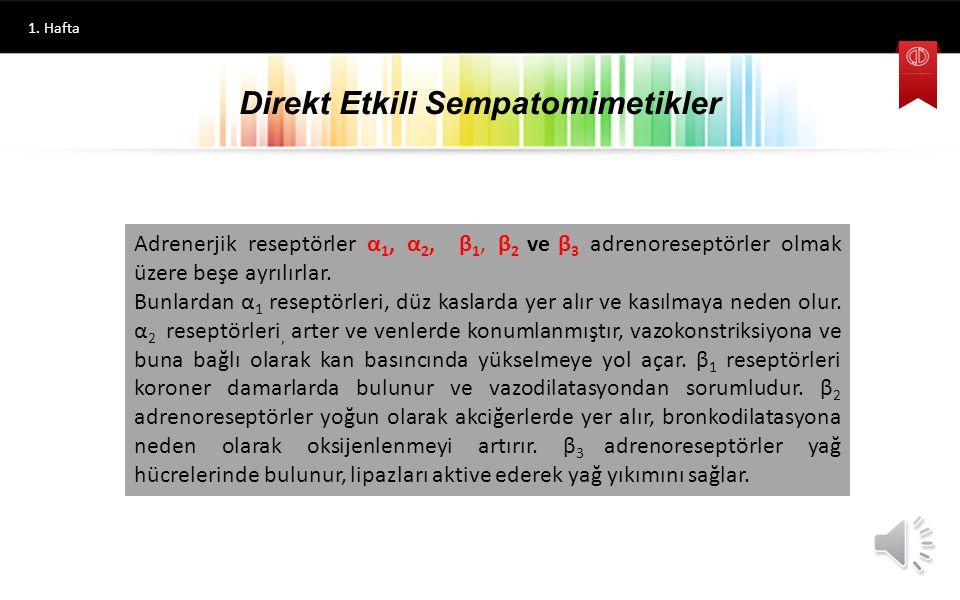 Direkt Etkili Sempatomimetikler 1.