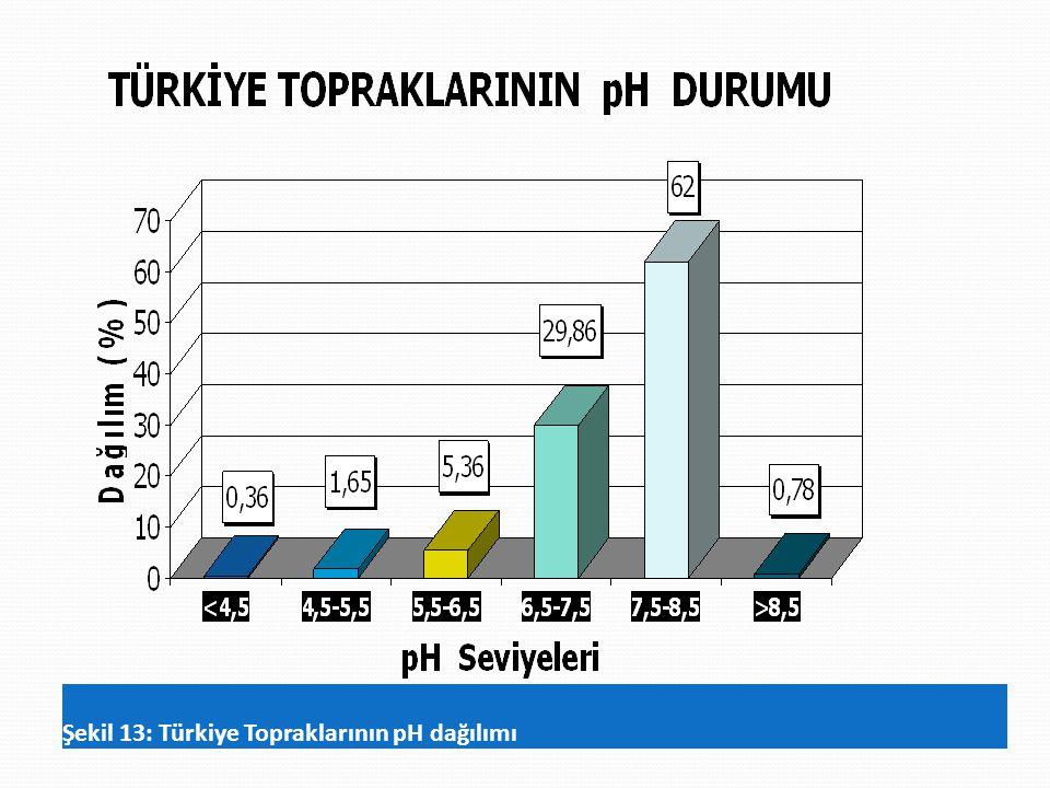 Şekil 13: Türkiye Topraklarının pH dağılımı