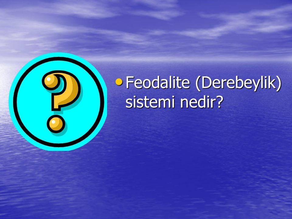 Feodalite (Derebeylik) sistemi nedir? Feodalite (Derebeylik) sistemi nedir?