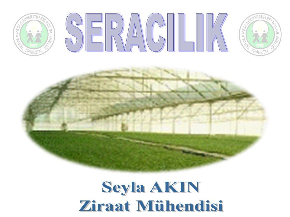 SERALARDA ÜRETİM TEKNOLOJİLERİ Topraklı ve topraksız tarım Genelde topraklı tarım yapılmaktadır.Pulluk tabanı, gübreleme, sulama gibi çalışmalarda sorun yaşanmaktadır.