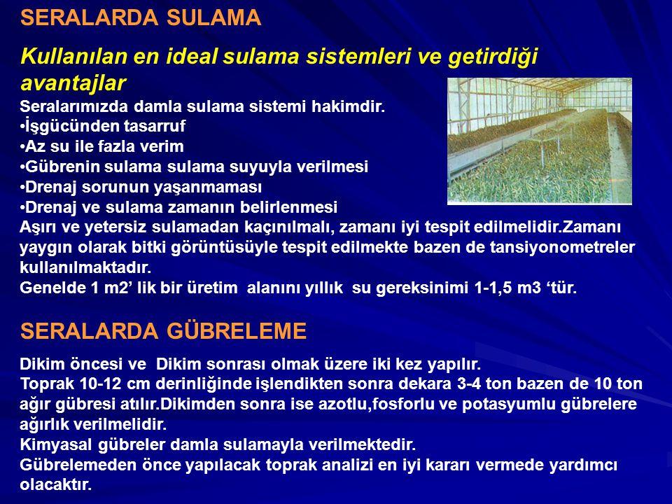 SERALARDA SULAMA Kullanılan en ideal sulama sistemleri ve getirdiği avantajlar Seralarımızda damla sulama sistemi hakimdir. İşgücünden tasarruf Az su