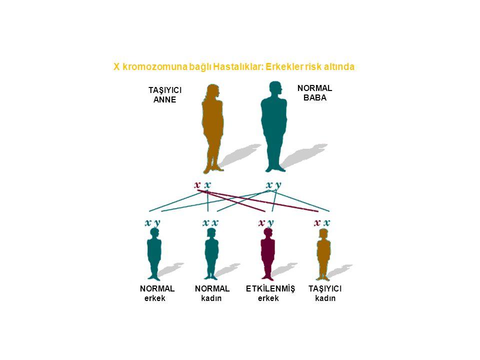 X kromozomuna bağlı Hastalıklar: Erkekler risk altında TAŞIYICI ANNE NORMAL BABA NORMAL NORMAL ETKİLENMİŞ TAŞIYICI erkek kadın erkek kadın