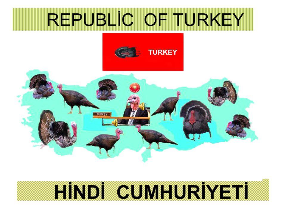 Bazı ülkeler kendilerini GREAT=BÜYÜ K, ÖNEMLİ - olarak nitelerken Ülkemizin bir kümes hayvanının ismi ile anılması kabul edilemez