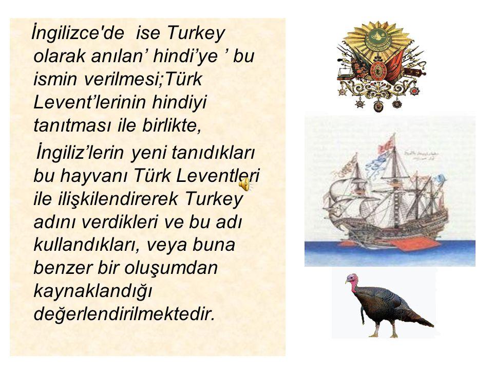 Keşiflerden önce ve Amerika kıtasının keşfinin yapıldığı yıllarda Akdeniz ticareti Osmanlı Denizcileri Leventlerinin elinde idi.