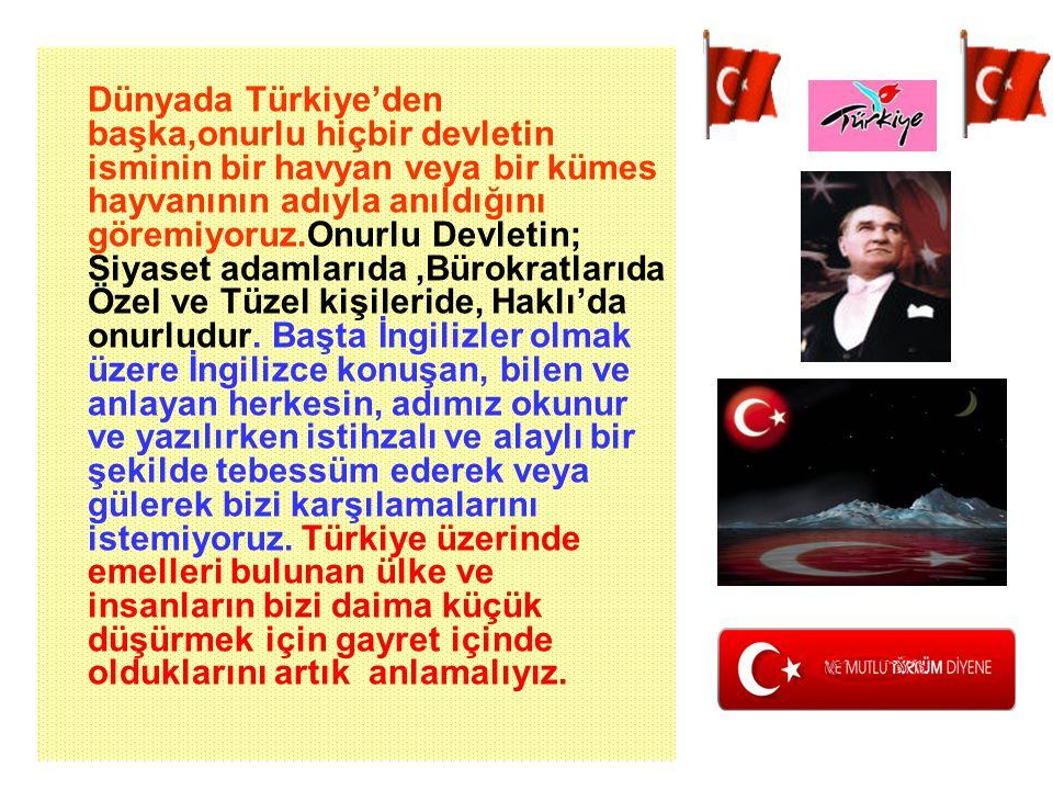 Turkey kelimesi, Osmanlı imparatorluğunun son zamanlarında hasta adam benzetmesinin yapıldığı ve itibarının neredeyse yok olduğu dönemde.