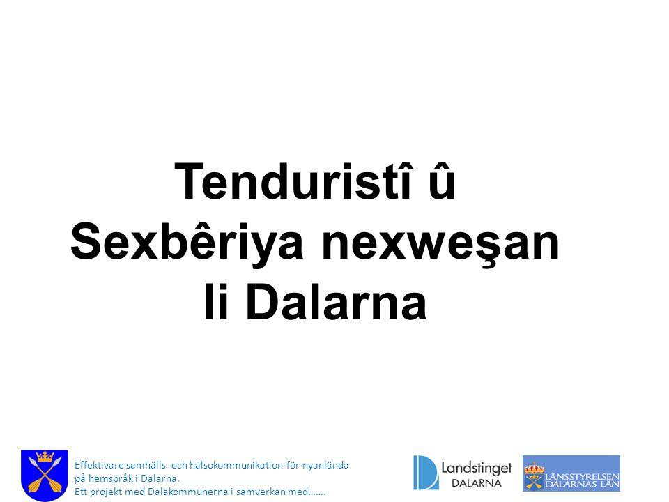 Tenduristî û Sexbêriya nexweşan li Dalarna Effektivare samhälls- och hälsokommunikation för nyanlända på hemspråk i Dalarna.