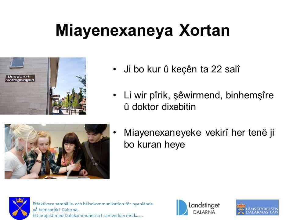 Miayenexaneya Xortan Ji bo kur û keçên ta 22 salî Li wir pîrik, şêwirmend, binhemşîre û doktor dixebitin Miayenexaneyeke vekirî her tenê ji bo kuran heye Effektivare samhälls- och hälsokommunikation för nyanlända på hemspråk i Dalarna.