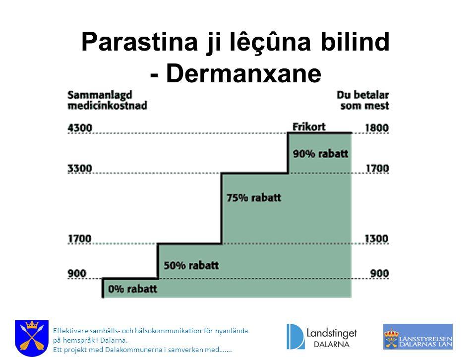 Parastina ji lêçûna bilind - Dermanxane Effektivare samhälls- och hälsokommunikation för nyanlända på hemspråk i Dalarna.