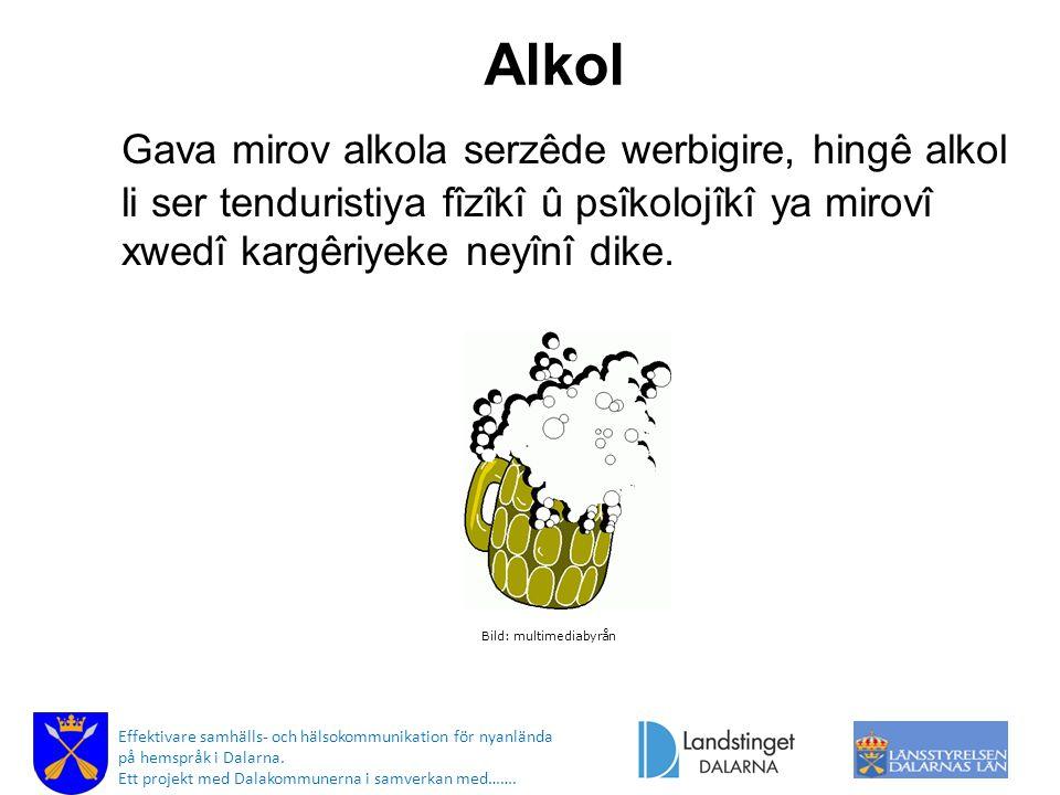 Alkol Gava mirov alkola serzêde werbigire, hingê alkol li ser tenduristiya fîzîkî û psîkolojîkî ya mirovî xwedî kargêriyeke neyînî dike.