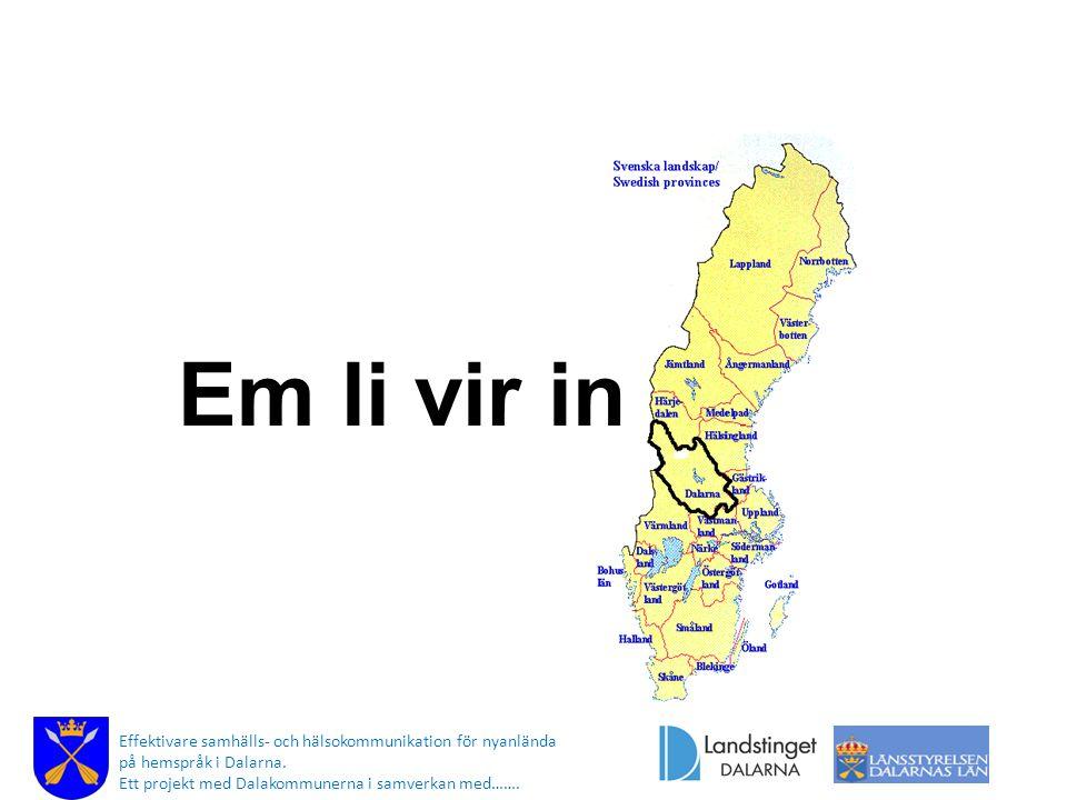 Em li vir in Effektivare samhälls- och hälsokommunikation för nyanlända på hemspråk i Dalarna.