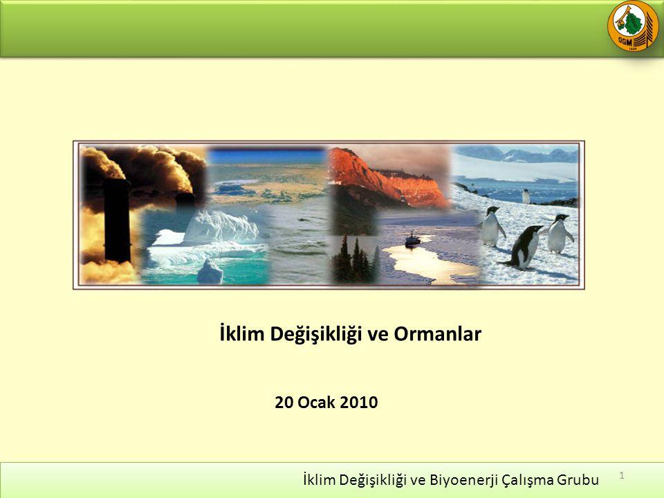 20 Ocak 2010 İklim Değişikliği ve Biyoenerji Çalışma Grubu 1 İklim Değişikliği ve Ormanlar