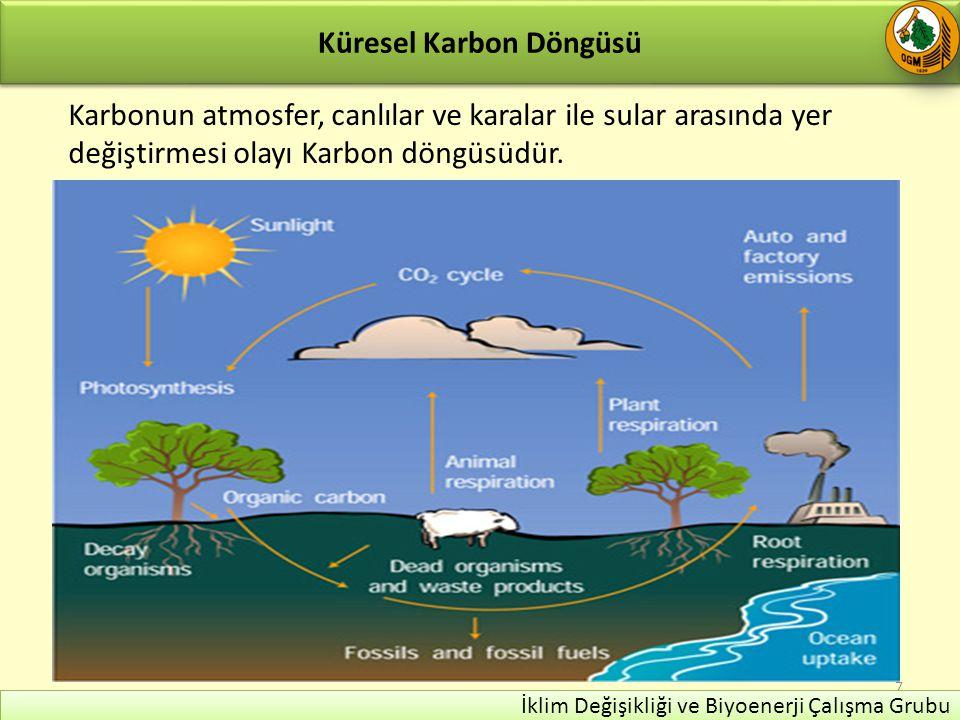 Karbon Döngüsü Karalardaki bitkiler 60 milyar ton karbon Okyanuslar 180 milyar tondur.