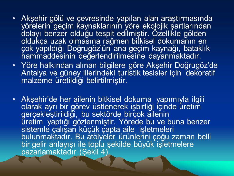 Akşehir gölü ve çevresinde yapılan alan araştırmasında yörelerin geçim kaynaklarının yöre ekolojik şartlarından dolayı benzer olduğu tespit edilmiştir
