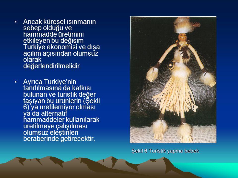 Şekil 6 Turistik yapma bebek Ancak küresel ısınmanın sebep olduğu ve hammadde üretimini etkileyen bu değişim Türkiye ekonomisi ve dışa açılım açısında