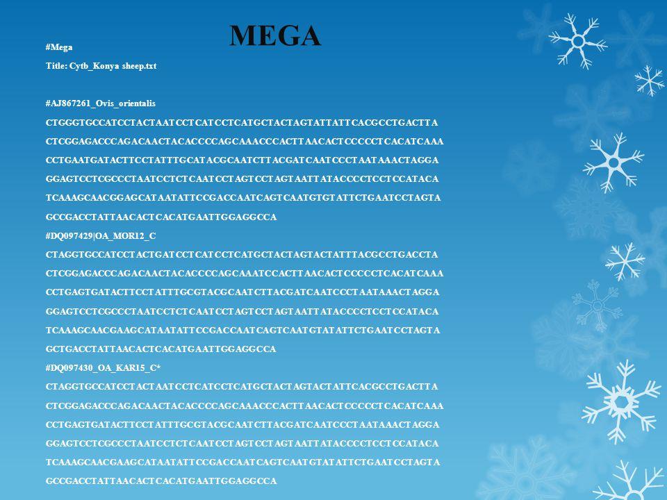 MEGA #Mega Title: Cytb_Konya sheep.txt #AJ867261_Ovis_orientalis CTGGGTGCCATCCTACTAATCCTCATCCTCATGCTACTAGTATTATTCACGCCTGACTTA CTCGGAGACCCAGACAACTACACCCCAGCAAACCCACTTAACACTCCCCCTCACATCAAA CCTGAATGATACTTCCTATTTGCATACGCAATCTTACGATCAATCCCTAATAAACTAGGA GGAGTCCTCGCCCTAATCCTCTCAATCCTAGTCCTAGTAATTATACCCCTCCTCCATACA TCAAAGCAACGGAGCATAATATTCCGACCAATCAGTCAATGTGTATTCTGAATCCTAGTA GCCGACCTATTAACACTCACATGAATTGGAGGCCA #DQ097429|OA_MOR12_C CTAGGTGCCATCCTACTGATCCTCATCCTCATGCTACTAGTACTATTTACGCCTGACCTA CTCGGAGACCCAGACAACTACACCCCAGCAAATCCACTTAACACTCCCCCTCACATCAAA CCTGAGTGATACTTCCTATTTGCGTACGCAATCTTACGATCAATCCCTAATAAACTAGGA GGAGTCCTCGCCCTAATCCTCTCAATCCTAGTCCTAGTAATTATACCCCTCCTCCATACA TCAAAGCAACGAAGCATAATATTCCGACCAATCAGTCAATGTATATTCTGAATCCTAGTA GCTGACCTATTAACACTCACATGAATTGGAGGCCA #DQ097430_OA_KAR15_C* CTAGGTGCCATCCTACTAATCCTCATCCTCATGCTACTAGTACTATTCACGCCTGACTTA CTCGGAGACCCAGACAACTACACCCCAGCAAACCCACTTAACACTCCCCCTCACATCAAA CCTGAGTGATACTTCCTATTTGCGTACGCAATCTTACGATCAATCCCTAATAAACTAGGA GGAGTCCTCGCCCTAATCCTCTCAATCCTAGTCCTAGTAATTATACCCCTCCTCCATACA TCAAAGCAACGAAGCATAATATTCCGACCAATCAGTCAATGTATATTCTGAATCCTAGTA GCCGACCTATTAACACTCACATGAATTGGAGGCCA