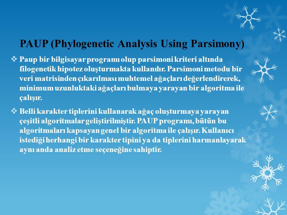 PAUP (Phylogenetic Analysis Using Parsimony)  Paup bir bilgisayar programı olup parsimoni kriteri altında filogenetik hipotez oluşturmakta kullanılır.