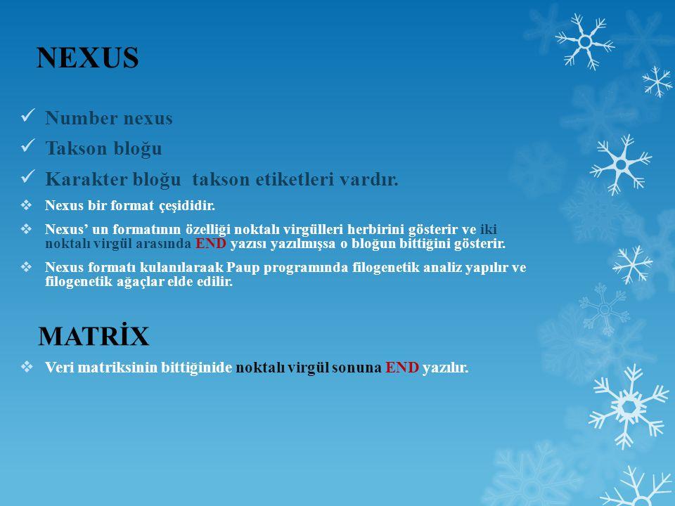 NEXUS Number nexus Takson bloğu Karakter bloğu takson etiketleri vardır.