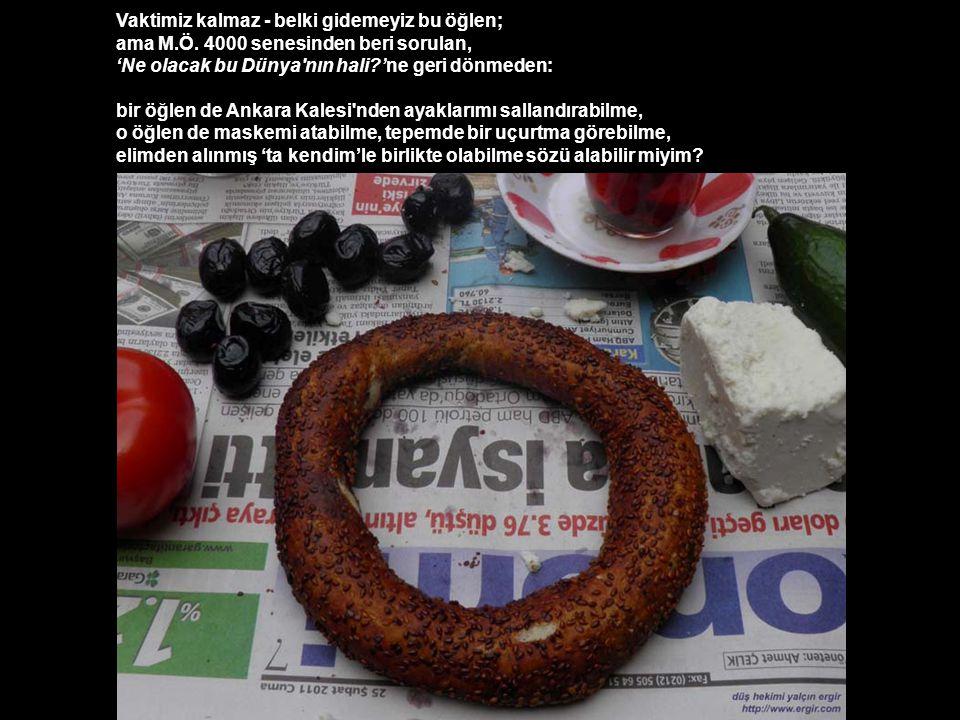 Sonra da bir gazete serip masamıza, Hal'den aldığımız peynir, zeytin, domatesle, çıtır çıtır bir öğlen yemeği yiyebilir miyim?