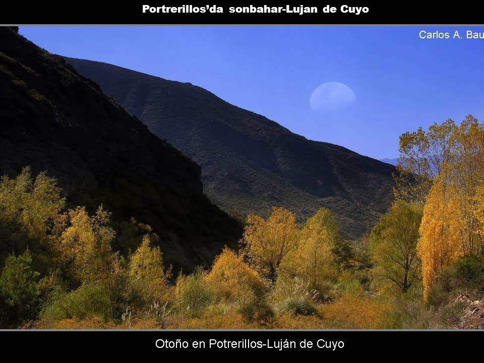 Portrerillos'da sonbahar-Lujan de Cuyo