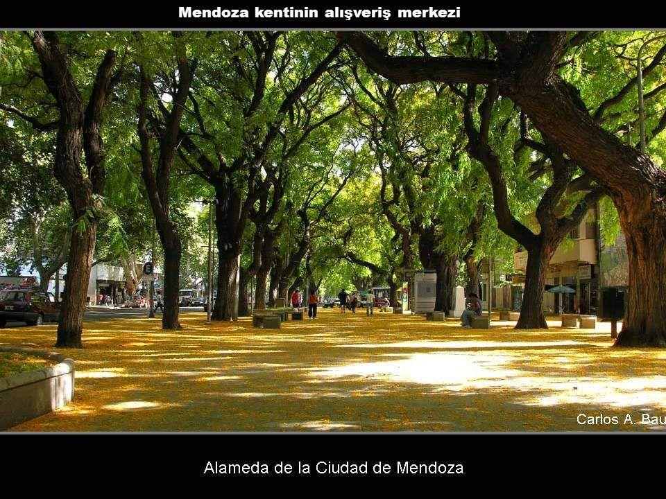 Mendoza kentinin alışveriş merkezi