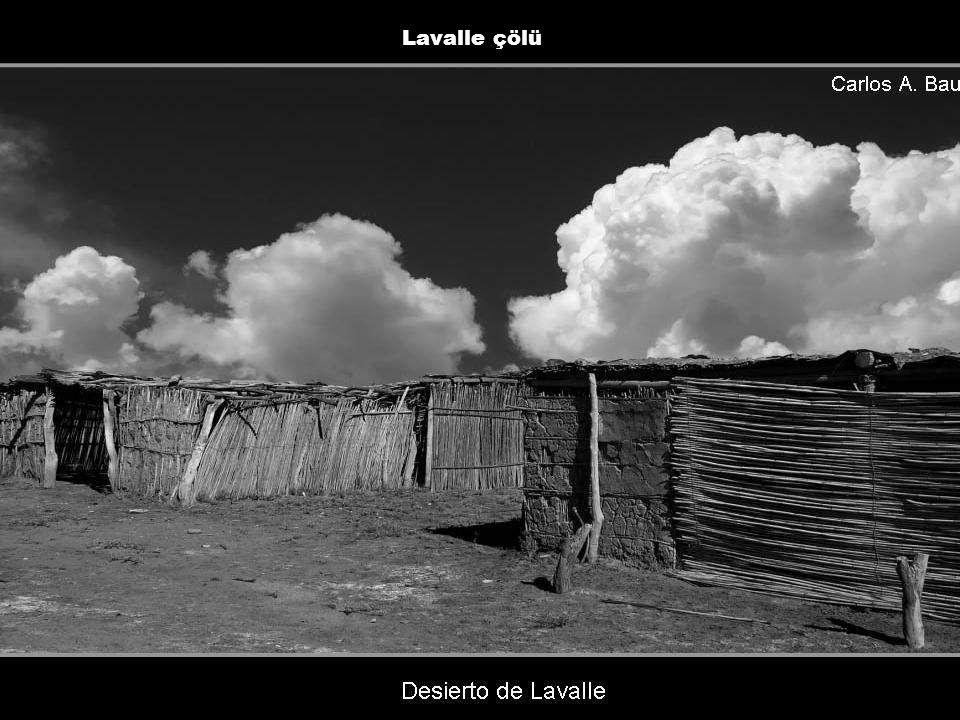 Lavalle çölü