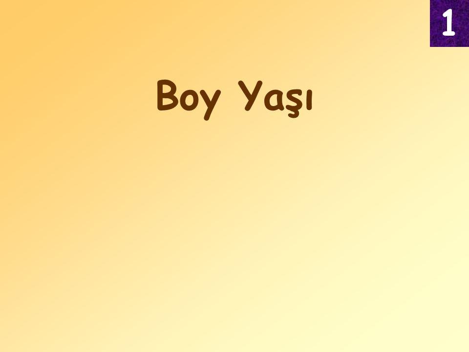 Boy Yaşı 1