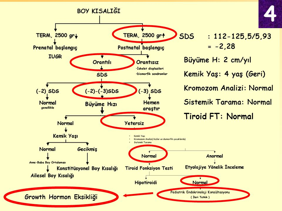 Kemik Yaş: 4 yaş (Geri) Büyüme H: 2 cm/yıl SDS: 112-125,5/5,93 = -2,28 Kromozom Analizi: Normal Sistemik Tarama: Normal Tiroid FT: Normal Growth Hormo