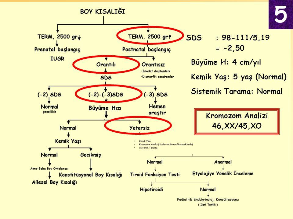 Kemik Yaş: 5 yaş (Normal) Büyüme H: 4 cm/yıl SDS: 98-111/5,19 = -2,50 Kromozom Analizi 46,XX/45,XO Sistemik Tarama: Normal 5