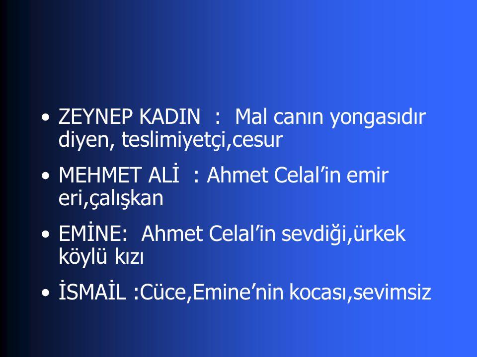 Yaban aydın köylü çatışmasına bir örnek Savaş içinde yeşeren bir sevda Bir vurdumduymazlık örneği Hem Türkiye'de hem de yurtdışında büyük yankı uyandıran bir roman Ele alınan konu bakımından edebiyatımızda ilk
