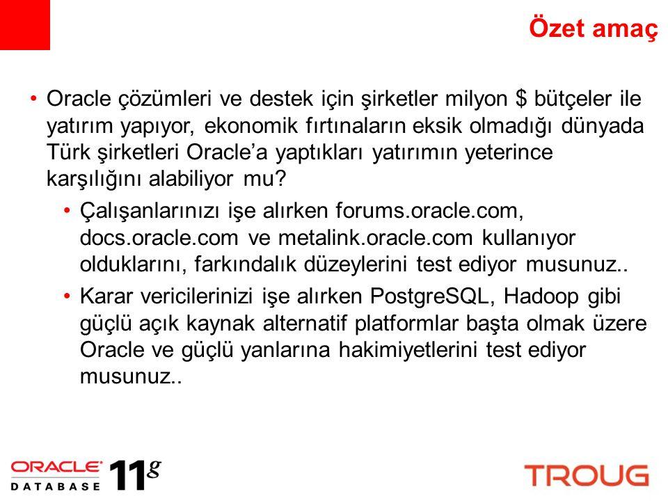 Özet amaç Oracle çözümleri ve destek için şirketler milyon $ bütçeler ile yatırım yapıyor, ekonomik fırtınaların eksik olmadığı dünyada Türk şirketler