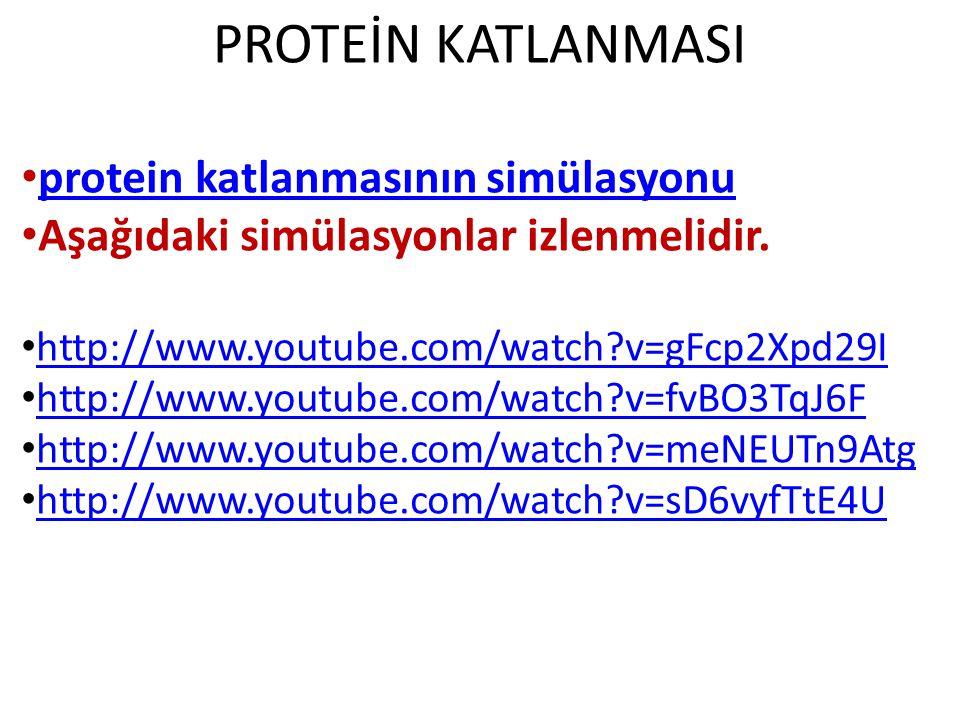 protein katlanmasının simülasyonu Aşağıdaki simülasyonlar izlenmelidir. http://www.youtube.com/watch?v=gFcp2Xpd29I http://www.youtube.com/watch?v=fvBO