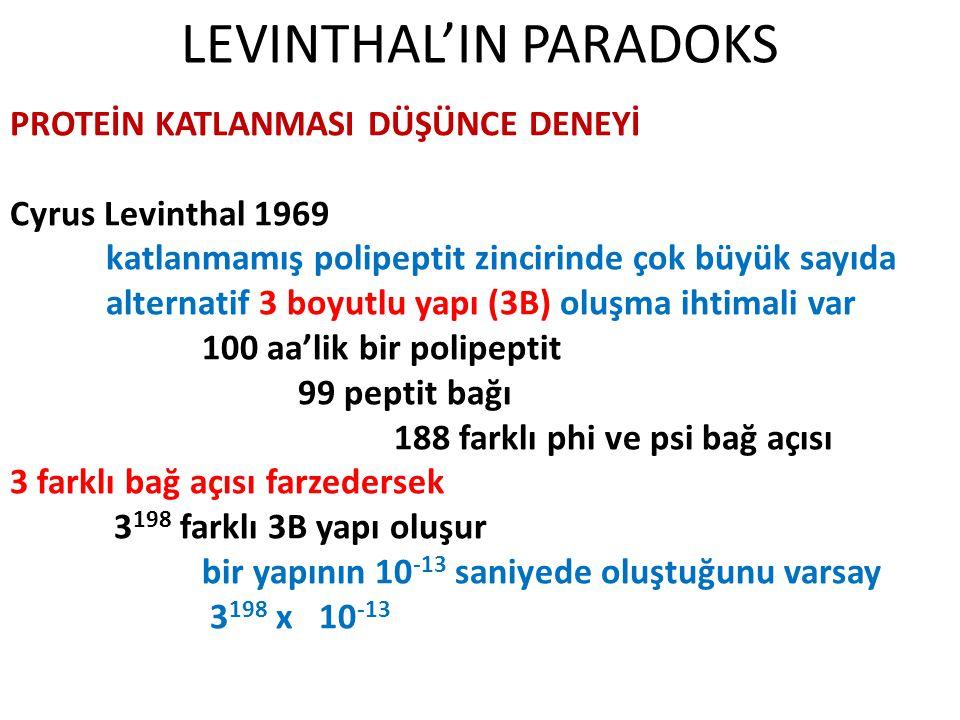 LEVINTHAL'IN PARADOKS PROTEİN KATLANMASI DÜŞÜNCE DENEYİ Cyrus Levinthal 1969 katlanmamış polipeptit zincirinde çok büyük sayıda alternatif 3 boyutlu y