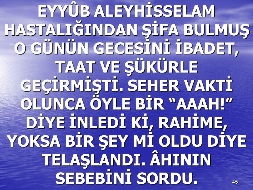 """45 EYYÛB ALEYHİSSELAM HASTALIĞINDAN ŞİFA BULMUŞ O GÜNÜN GECESİNİ İBADET, TAAT VE ŞÜKÜRLE GEÇİRMİŞTİ. SEHER VAKTİ OLUNCA ÖYLE BİR """"AAAH!"""" DİYE İNLEDİ K"""
