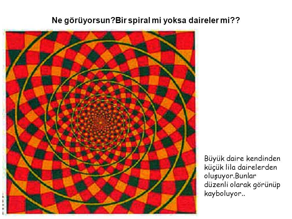 Ne görüyorsun?Bir spiral mi yoksa daireler mi?? Büyük daire kendinden küçük lila dairelerden oluşuyor.Bunlar düzenli olarak görünüp kayboluyor..