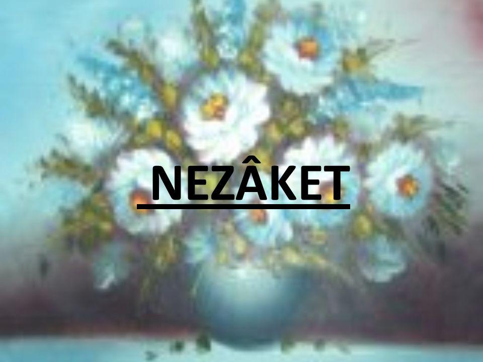 NEZÂKET