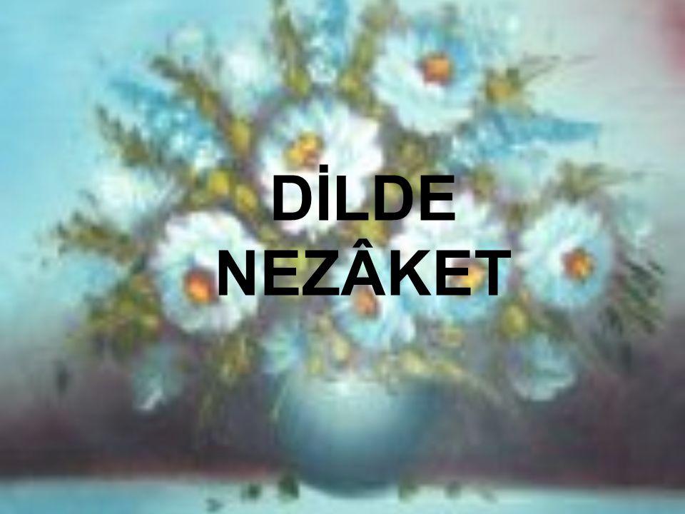 DİLDE NEZÂKET