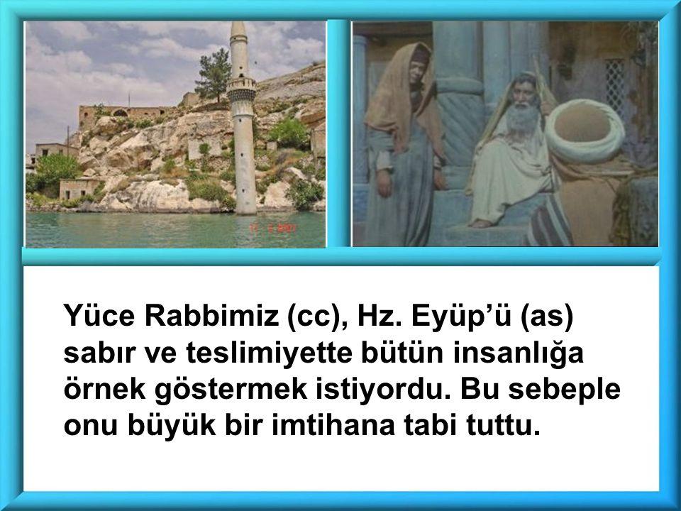 Yüce Rabbimiz (cc), Hz.