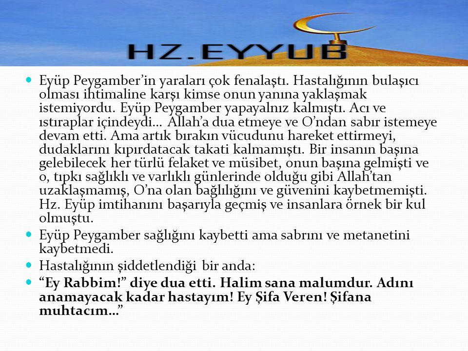 Yüce Allah, kulundan hoşnuttu.Eyüp Peygamberin makamını, katında daha da yüceltti.