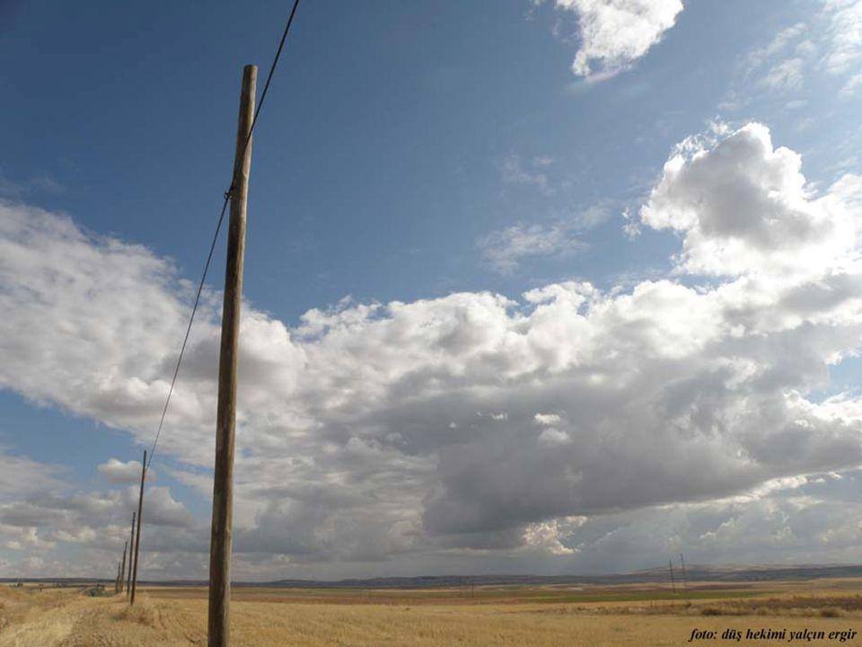 Baz istasyonlu direklerin yerini, tellerine kuşlar konan ahşap telefon direkler alıyor.