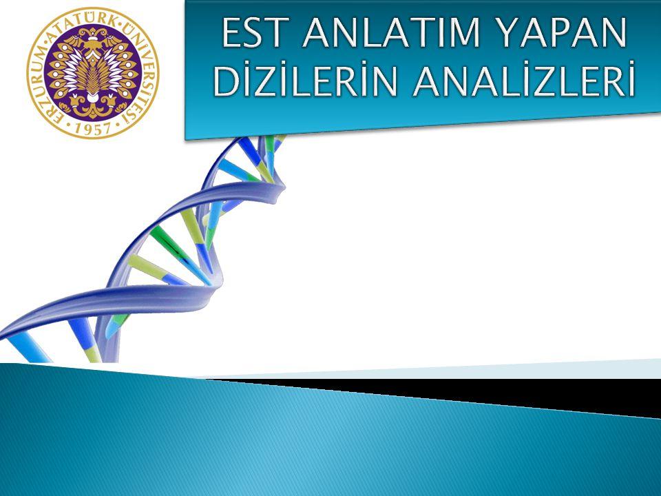  mRNA ların dizilenmesi ile oluşturulan EST nin birden fazla kopyaları oluşabilmektedir.