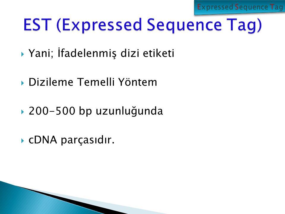 EST Verisi Yüksek Kaliteli EST Verileri Birleştirilmiş EST Dizileri Önemli Derecede Eşlemler Fonksiyonu Bilinmiyen Yeni Diziler yok Fonksiyonel Analizler var Elde Edilen Verilerin Görselleştirilmesi ve Sonuçların Yorumlası Düşük Kaliteli, kısa diziler silinir Aşama 1: EST ön işleme, Vektör dizilerin atılması, düşük değerler ve tekrarların maskelenmesi Aşama 2: EST Dizilerinin kümelenmesi ve birleştirilmesi Aşama 3: Veri tabanından benzerlik araştırması Tahmini Peptidler Aşama 4: Kavramsal olarak translasyon Aşama 5: Protein veri tabanında benzerlik araştırması