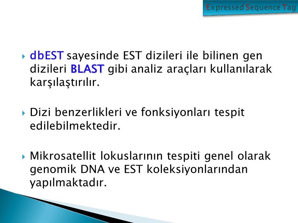BLAST  dbEST sayesinde EST dizileri ile bilinen gen dizileri BLAST gibi analiz araçları kullanılarak karşılaştırılır.  Dizi benzerlikleri ve fonksiy