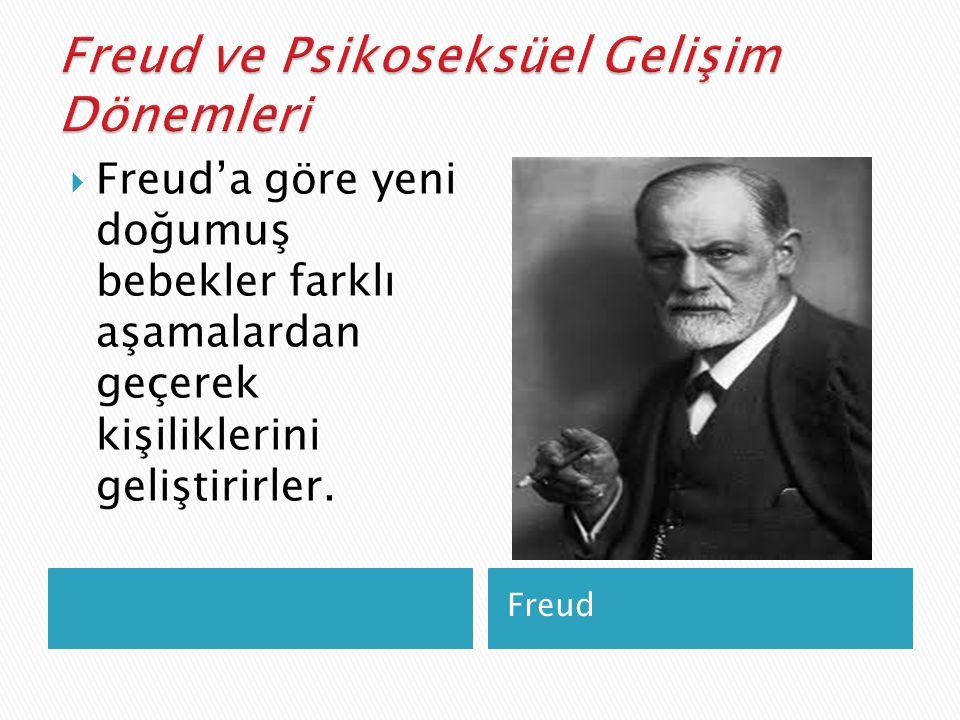  Freud bu aşamaları 'psikoseksüel gelişim dönemleri' olarak adlandırır.